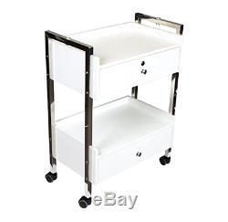 Dental Medical Mobile Utility Cabinet & Cart (Steel Frame)