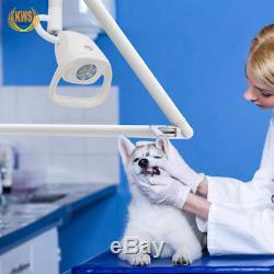 21w Tenture Chirurgie Lumière Froide Lampe D'examen Médical Dentaire Orthopedics