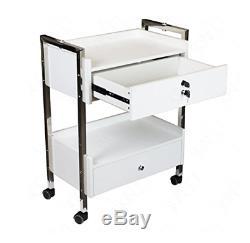 Mobile Utility Dental Cabinet Médical Et Panier (frame Steel)
